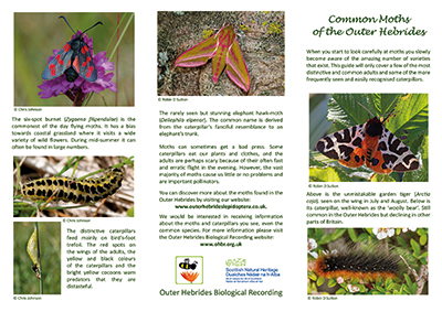 OHBR moths leaflet