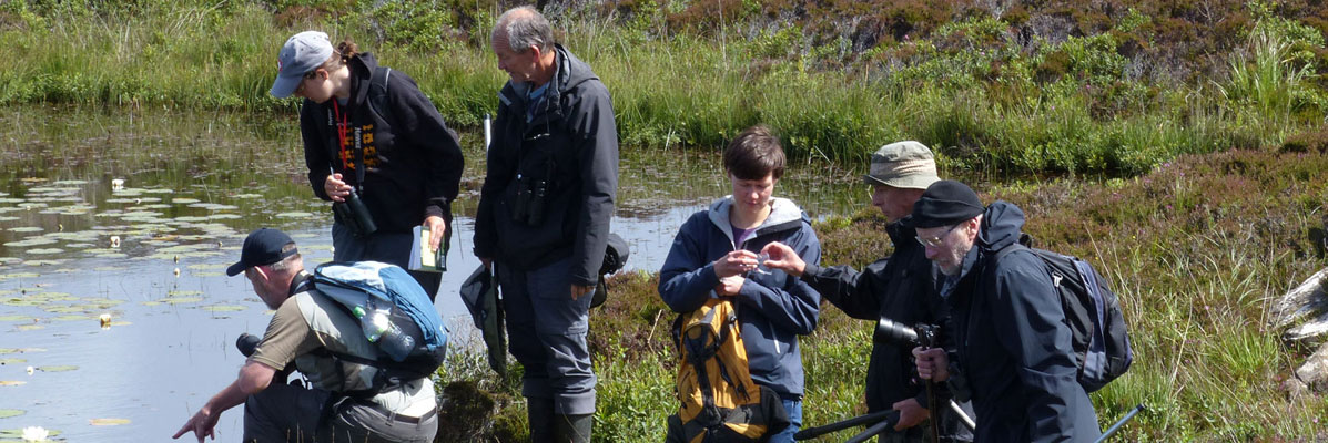 Outer Hebrides Biological Recording group